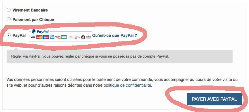 Payer-CB-Paypal-1
