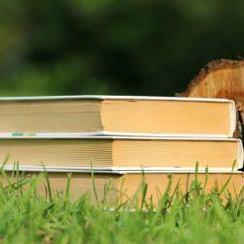 livres-occasion-sante-esoterisme-developpement-personnel Actualités