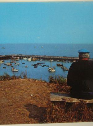 CP vue du Port st Gildas depuis le Loric avec Gaby Le Bourgès