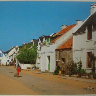CP Vue d'une rue du Village de Houat