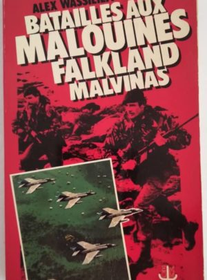 bataille-malouines-falkland-malvinas-wassilieff